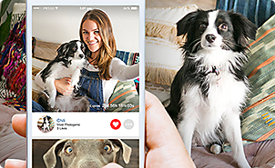 Pet supplies pet food and pet products petco heads tails is the first ios app where you can win a petco gift card for taking cute pet selfies solutioingenieria Image collections