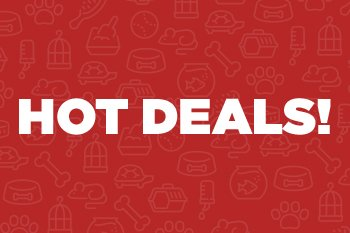 Hot Deals - Snap them up before they cool down - Shop Now