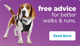 Free advice for better walks & runs - Read More