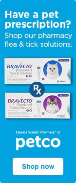 Shop our pharmacy flea & tick solutions for cats