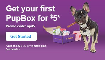 Get your first PupBox for $5 - Get Started