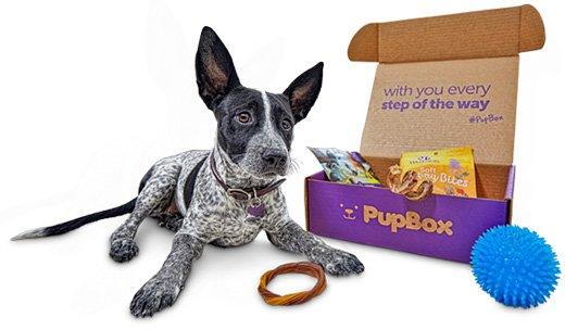 What is PupBox?   PupBox at Petco