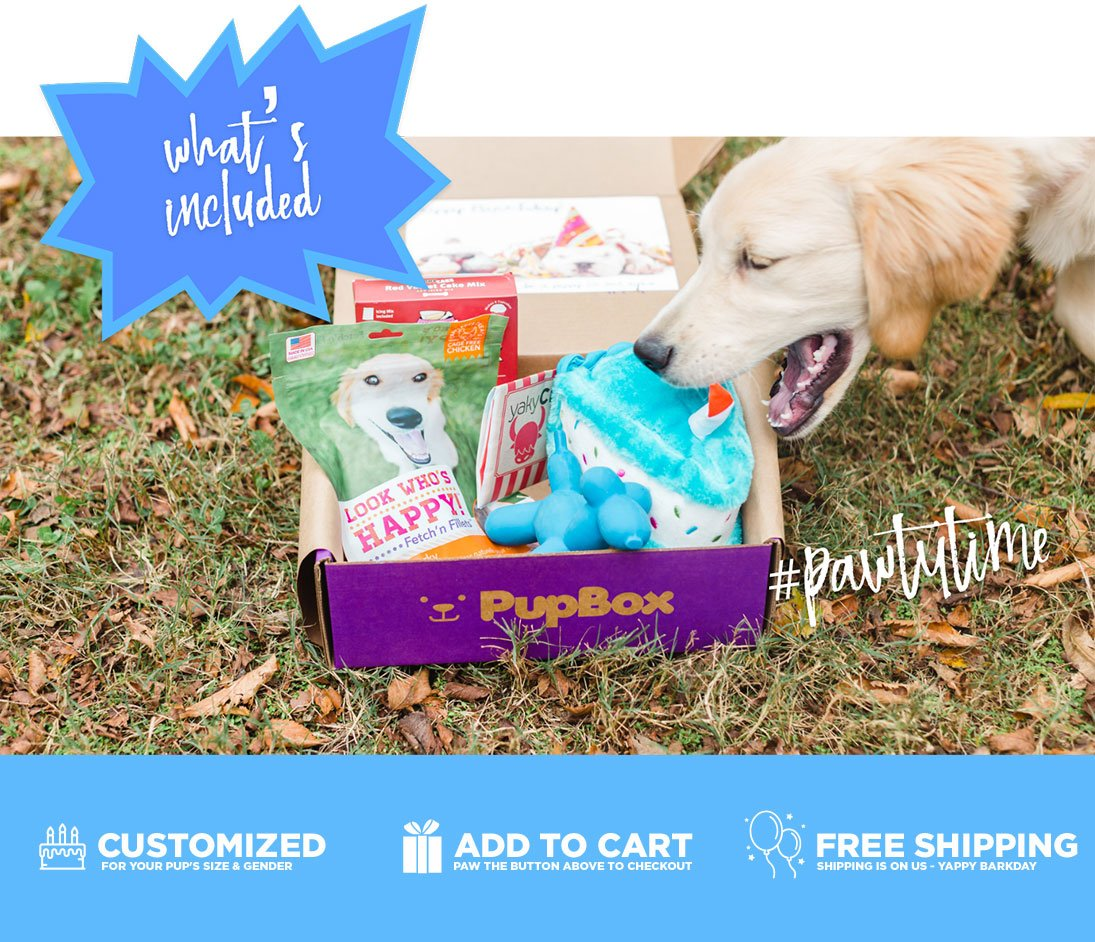 Birthday Boy Puppy & Dog Subscription Boxes | PupBox at Petco