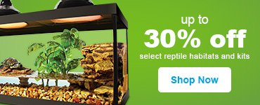 Up to 30% off reptile habitats - Shop Now