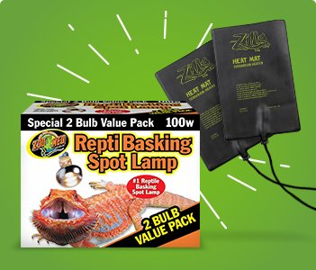 Reptile Heating & Lighting