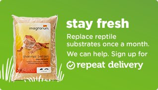 Replace reptile substrates once a month. We can help. Sign up for repeat delivery.