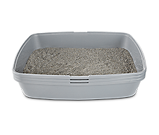 Sifting Litter Boxes