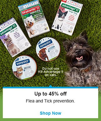 Up to 45% off flea and tick prevention - Shop Now