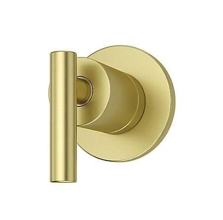 Brushed Gold Contempra Diverter Trim - 016-NC1BG - 1