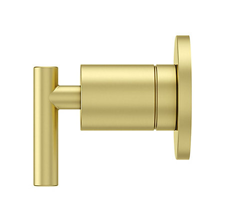 Brushed Gold Contempra Diverter Trim - 016-NC1BG - 3