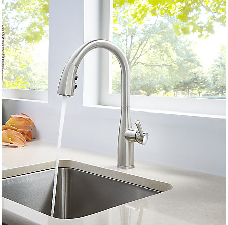 Stainless Steel Raya 1-Handle Pull-Down Kitchen Faucet with Soap Dispenser - F-529-7RYS - 4