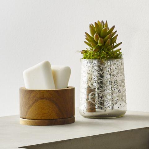 Bronson Soap Cactus