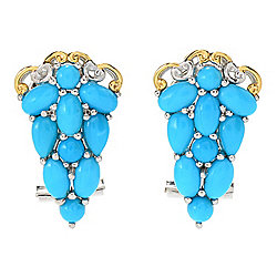 Gems en Vogue Sleeping Beauty Turquoise Cluster Stud Earrings w/ Omega Backs