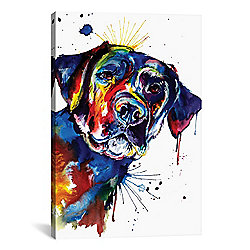 Wall Art at Evine - Weekday Best 'Black Lab' Canvas Gallery Wrap - 477-346 - 477-346
