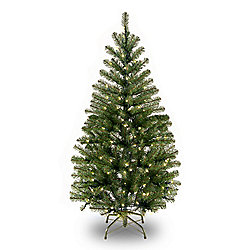 Holiday Premium Choice of Size Aspen Spruce Tree with Clear Lights