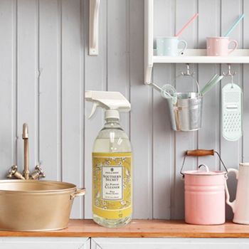 Cleaning Tools & Appliances For Every Room - Starting at $19.99 - 491-536 Paula Deen Choice of 2 (32 oz) Cleaning Solution Bottles - 491-536
