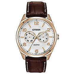 Citizen Men's 43mm Eco-Drive Analog Day/Date Leather Strap Watch
