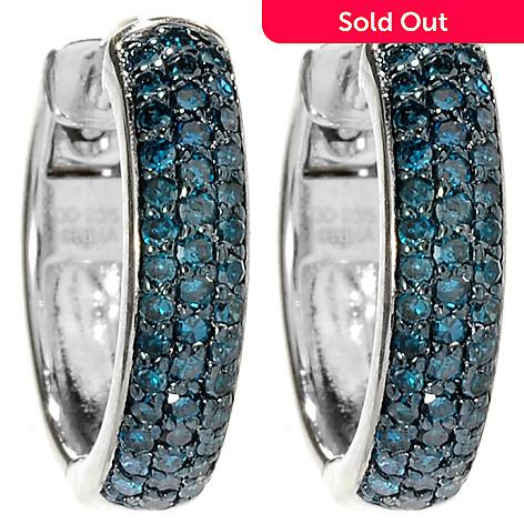 148 289 Diamond Treasures Sterling Silver 0 50ctw Blue Hoop Earrings