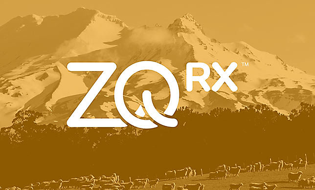 Introducing ZQRx