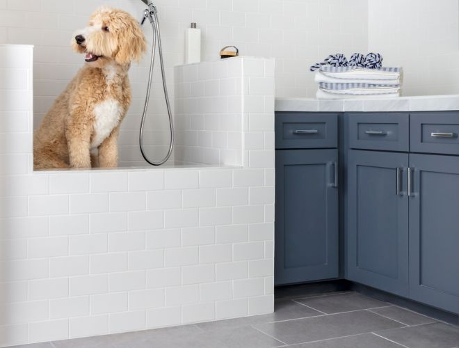 Dog Washing Station With White Subway Tile And Grey Concrete Look Floor