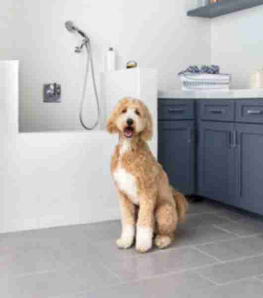 Dog washing station with white subway tile and grey concrete-look floor tile.