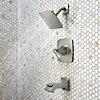 Product Vignette - pf_venturi_8p8-ws-vnsk_v2