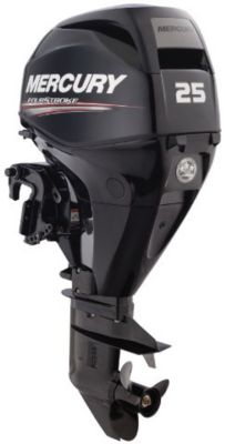 25 ELPT Black FourStroke Mercury engine