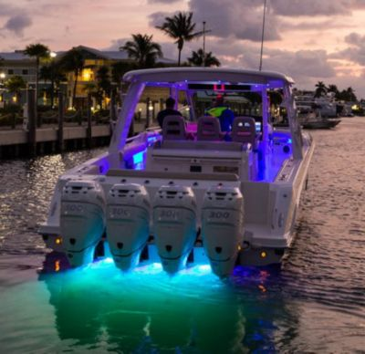 Lighting - underwater LED (blue)