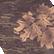 LW Camouflage MossyOakBreak Up