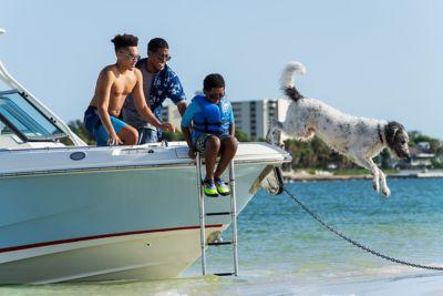 Beach boarding ladder