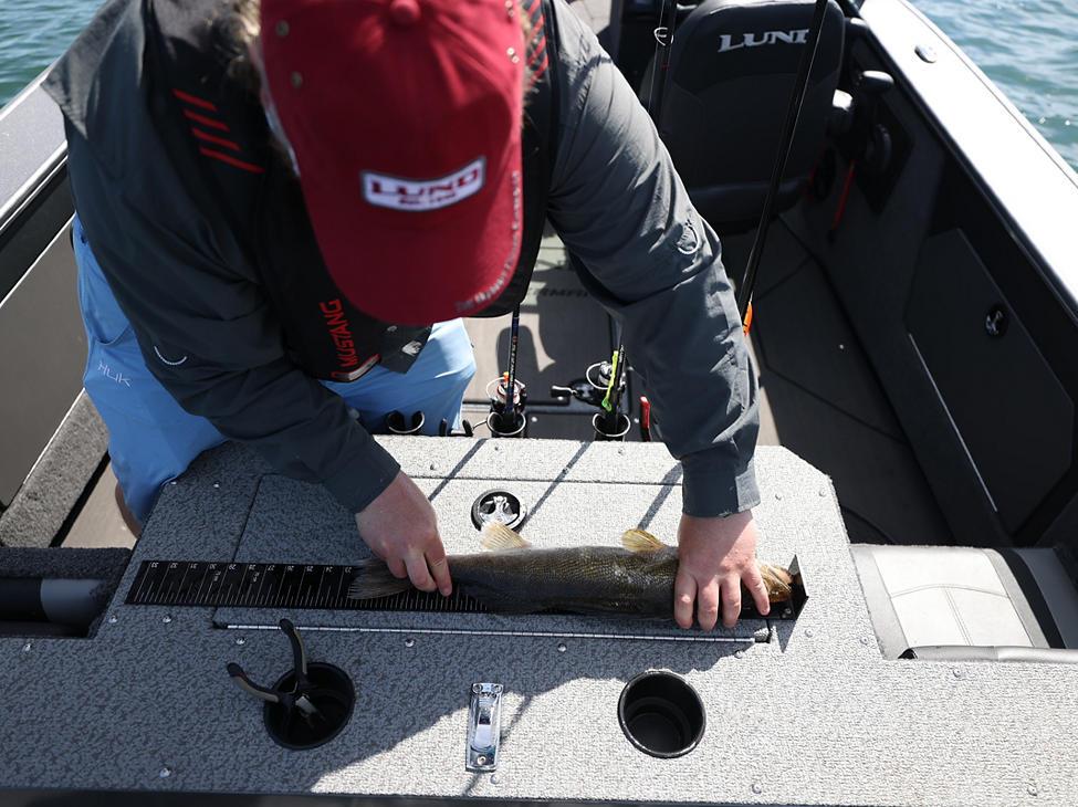 Fisherman Optional Lund Fish Ruler