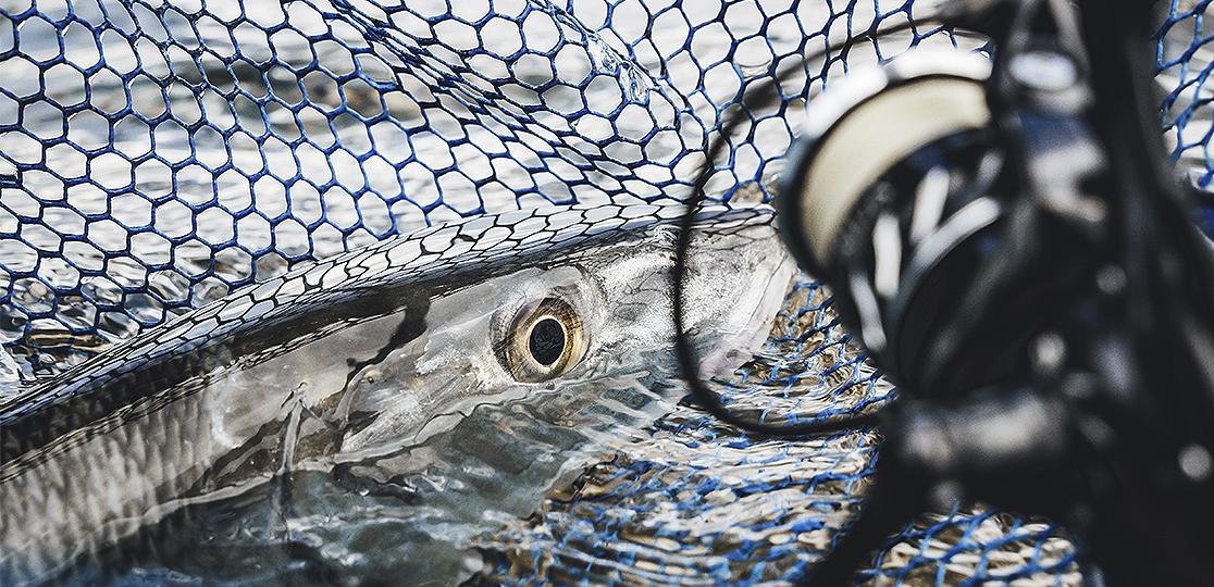 new_MR-Fishing-Gallery-Silder-1