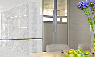 Nature inspired film adds privacy to conference room