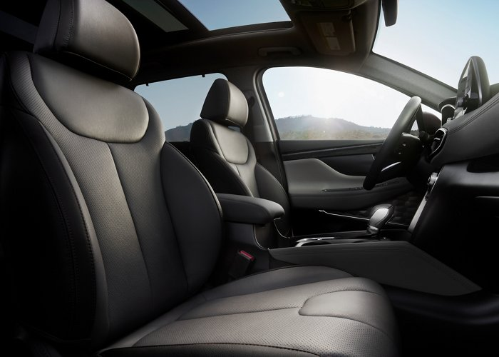 2020 Santa Fe Gray Leather Interior
