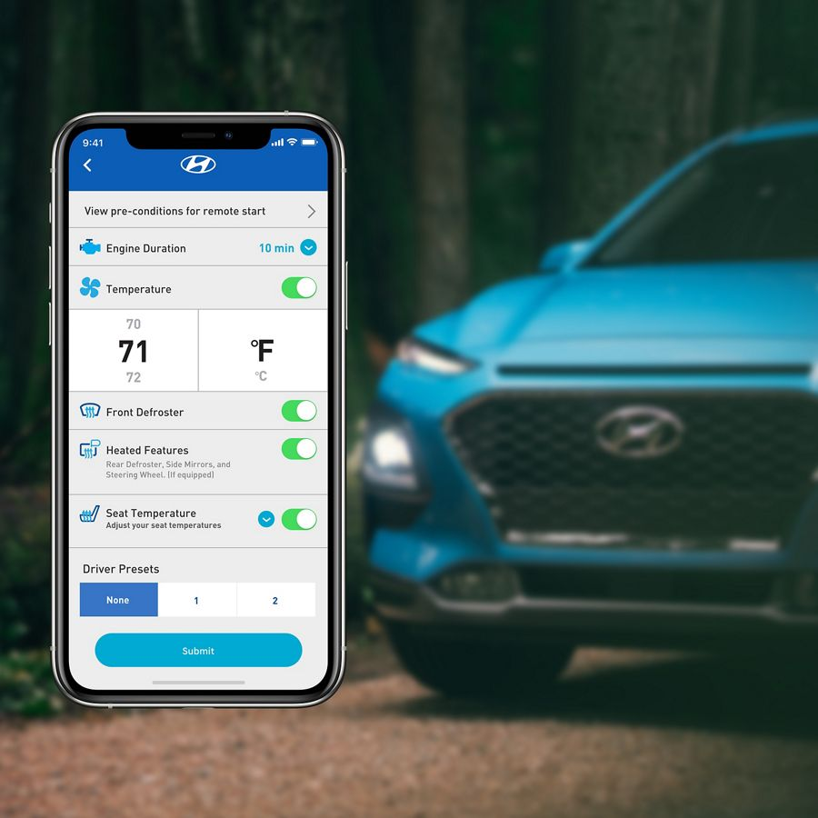 Blue Link® Connected Car Service