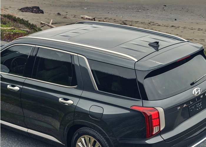 2020 Hyundai Palisade SEL Roof Side Rails