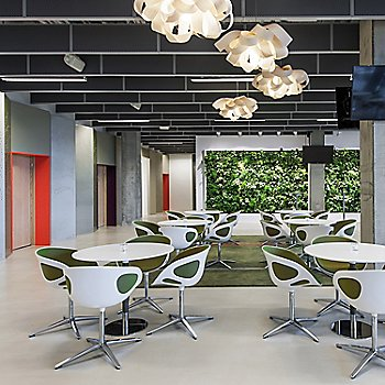 Ivory White, grouping in use in office