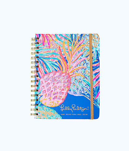 2019 12 Month Large Monthly Agenda, Multi Gypset Paradise, large