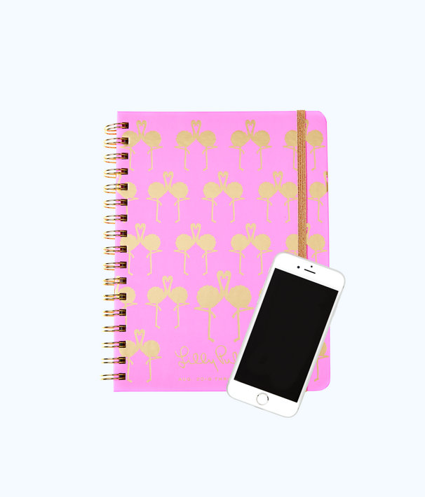 2018 - 2019 17 Month Monthly Planner, Pink Sunset Flamingo Planner, large