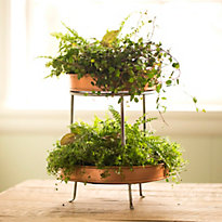 4 Favorites: Plant Stands at Home
