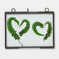 Botanical Valentines