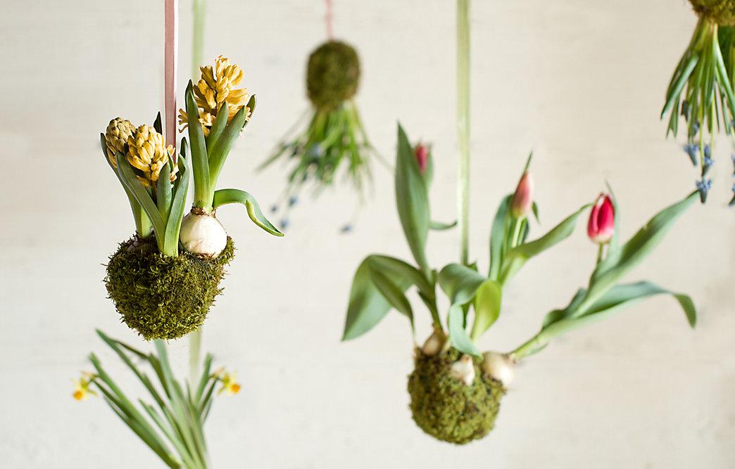 Ordinaire Spring String Gardens