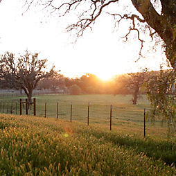 Where We've Been: Santa Ynez