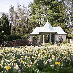 Garden Visit: Chanticleer in Spring