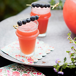 A Memorial Day Punch with Steve Wildy