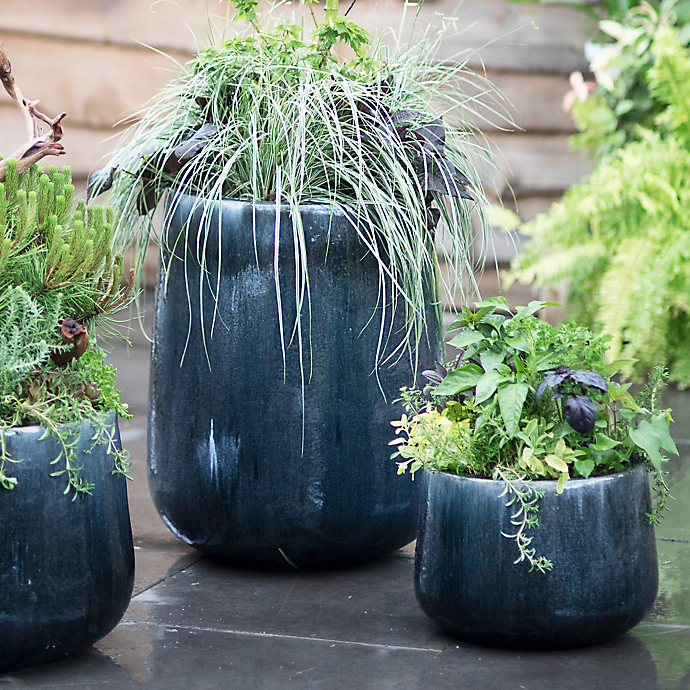 3 Summer Plantings For Father's Day