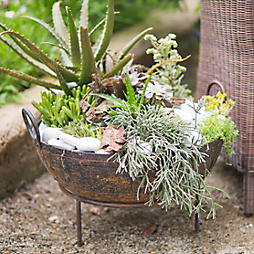 A Planted Fire Pit