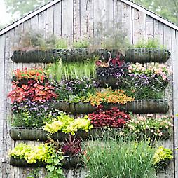 Vertical Gardens Through the Seasons