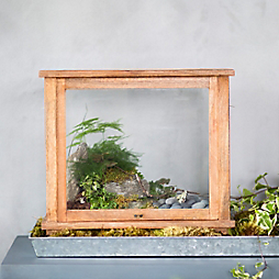 Summer Souvenir Terrariums