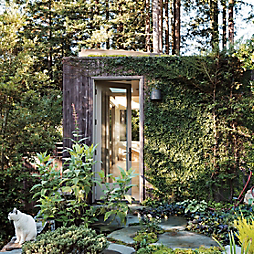 Gardenista in Residence: A Yoga Studio in the Redwoods